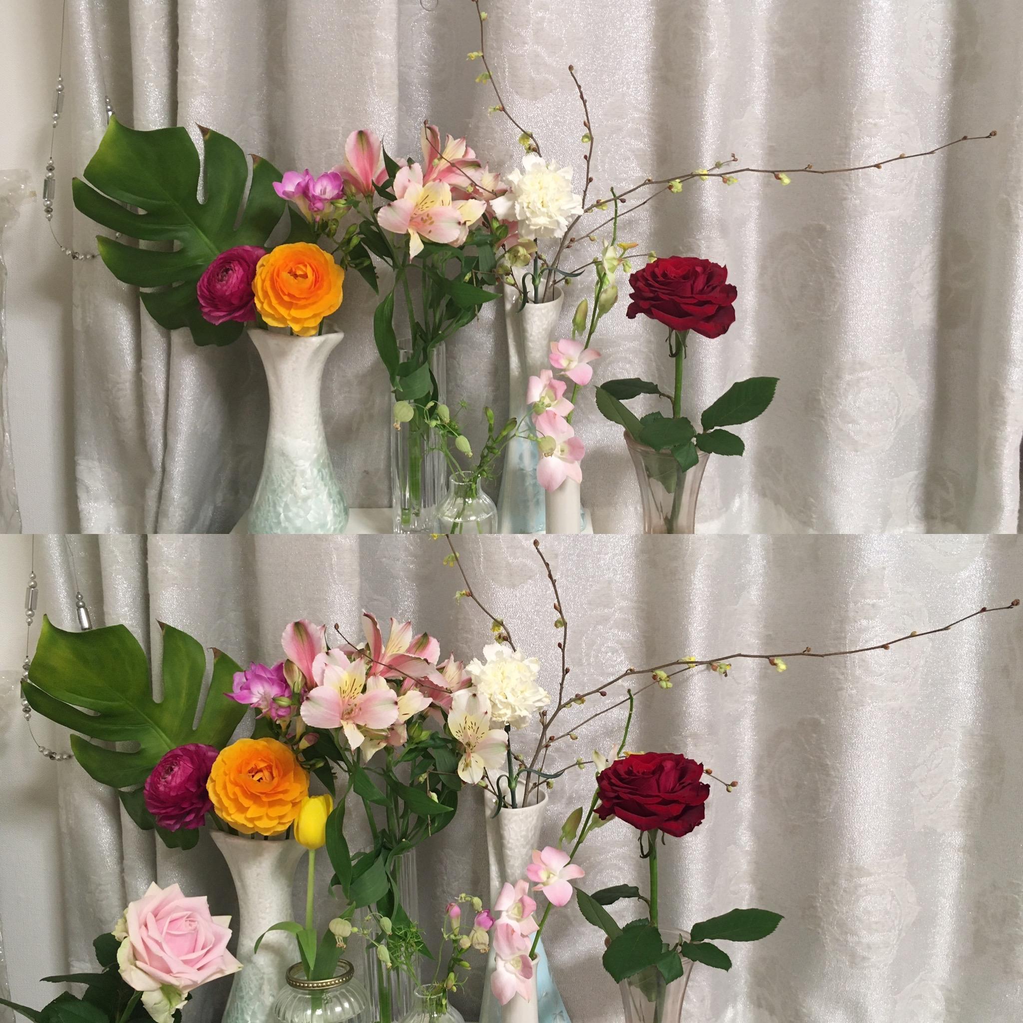 お花のある生活2。日比谷花壇サブスクリプションリニューアル